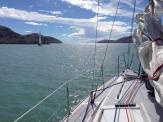 On the journey north up the coast to Picton
