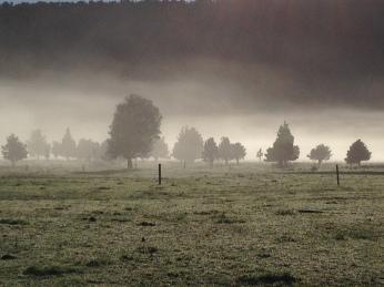Mist over Lake Matheson