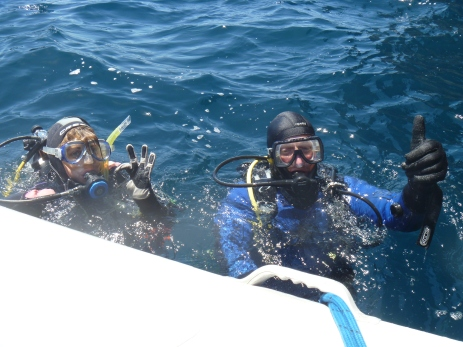 Diving fun