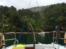 Rainy day in Flipper Bay