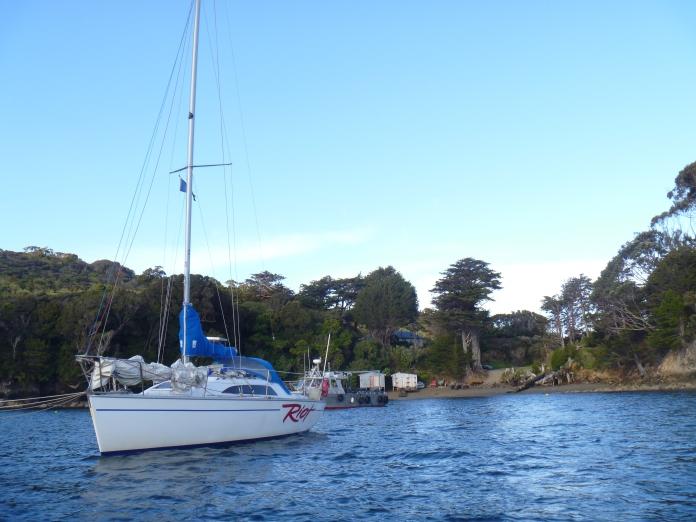 Stewart Island 009