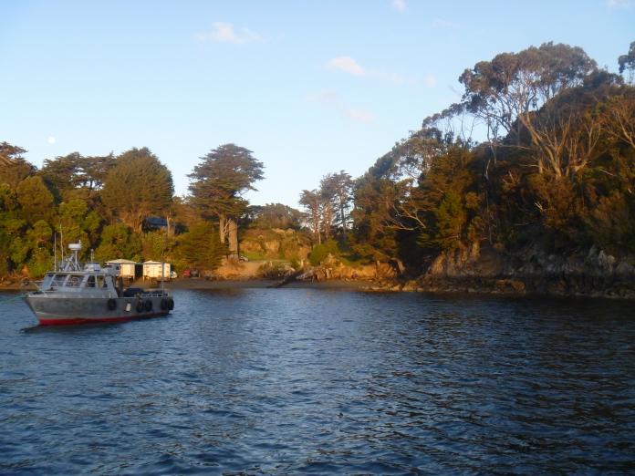 Stewart Island 018
