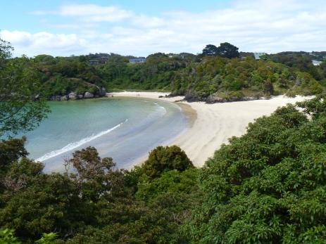 Stewart Island 024