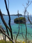 Stewart Island 061
