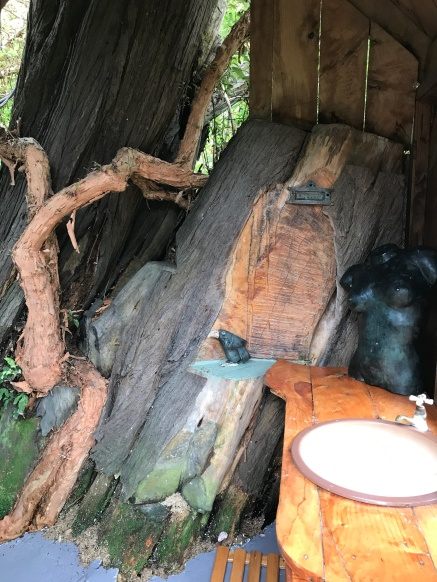 Tree Shower at Stony Bay