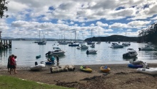 a large number of yachts at anchor in Kawau Island