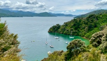 Yachts anchored in Governors Bay, Queen Charlotte Sound, Marlborough, New Zealand